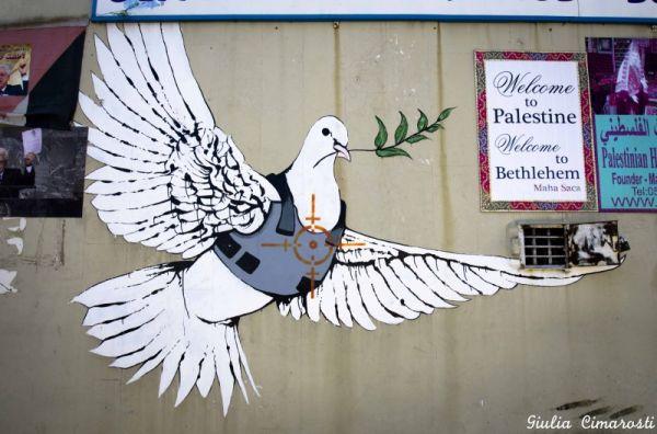 a1sx2_Thumbnail1_bethlehem.banksy-dove-bethlehem-800x529.jpg